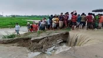 উলিপুরে তিস্তার পানির স্রোতে ভেসে গেল কৃষক l